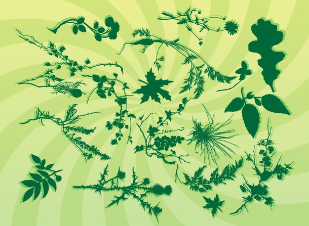 Nature Silhouette Graphics