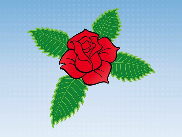 Romantic Rose Vector