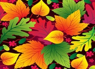 Autumn Leaves Vector Art