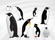 Penguin Illustrations