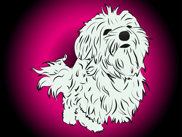Cute Vector Puppy