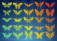 Colorful Butterfly Collection