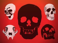 Skulls Vectors Graphics