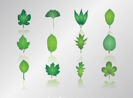 Leaf Graphics