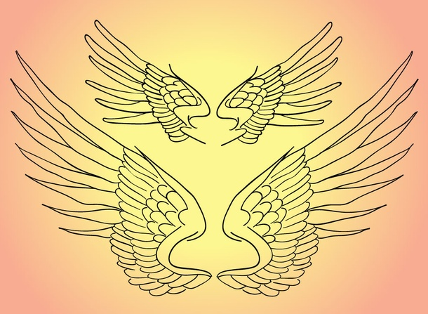 Line Art Wings : Wings line art