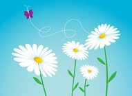 Daisy Flowers Vectors