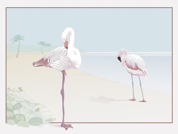 Flamingo Beach Vector