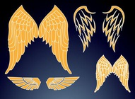 Wings Designs