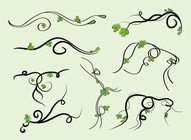 Swirling Vines