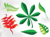 Stylish Leaf Graphics