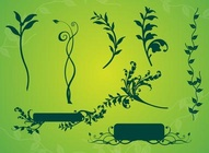 Vine Plant Graphics