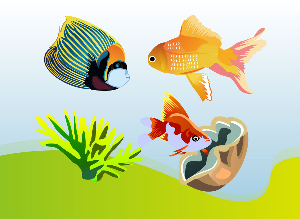 Angel Fish Graphics