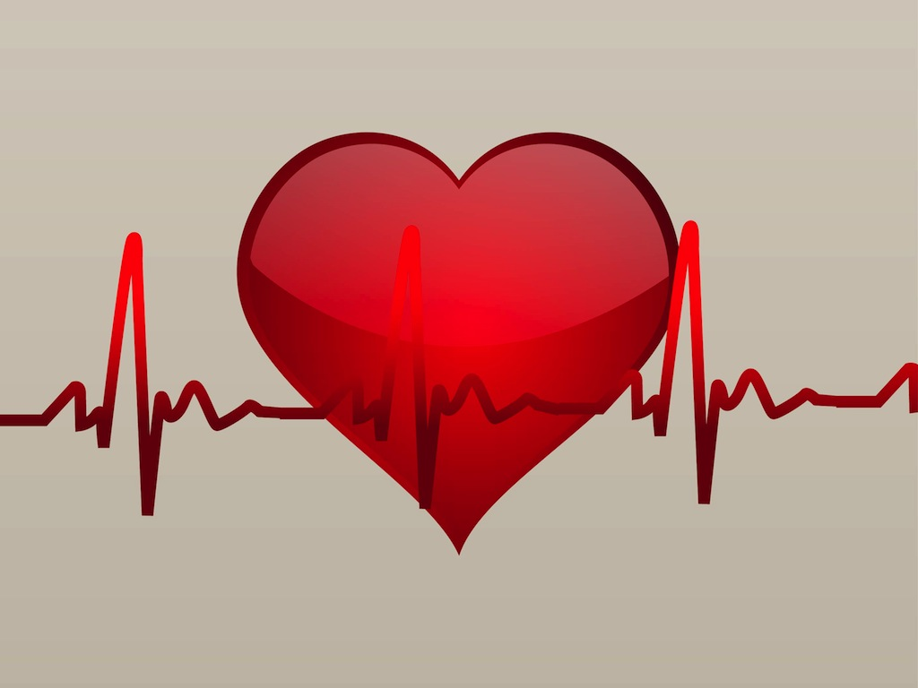 http://www.vectorfree.com/media/vectors/cardiac-vector.jpg