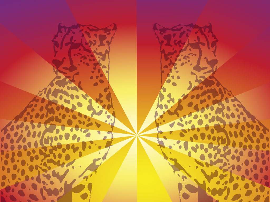 Cheetah Design