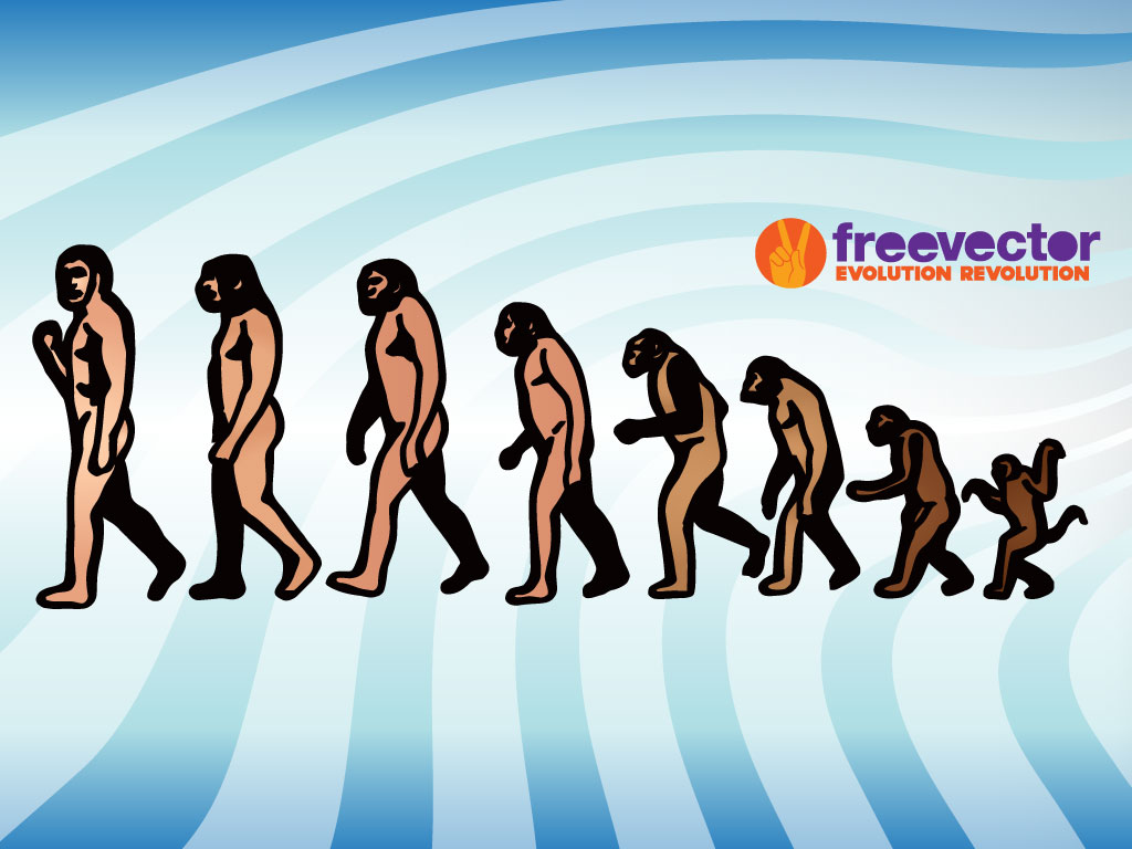shows evolution of ape becoming man. Darwin's theory of evolution ...