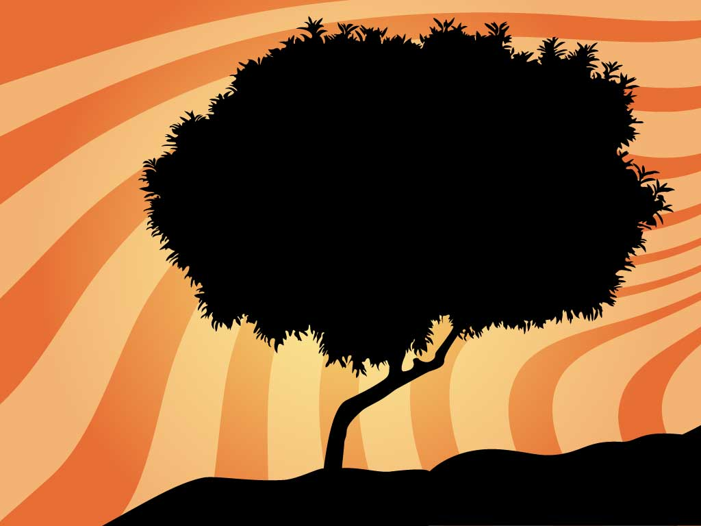 Hilltop Tree Silhouette