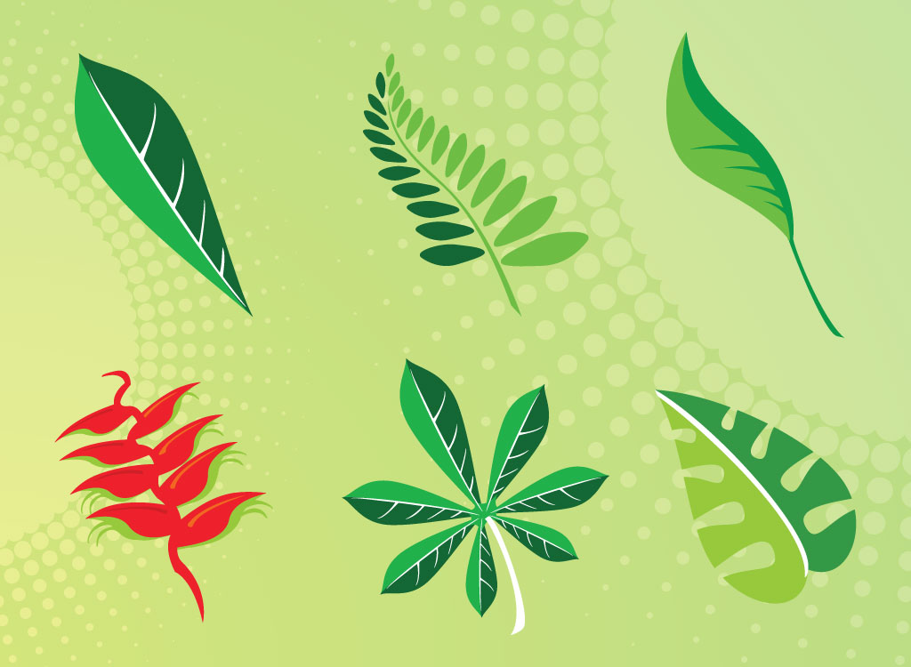 Leaf Vector Pack
