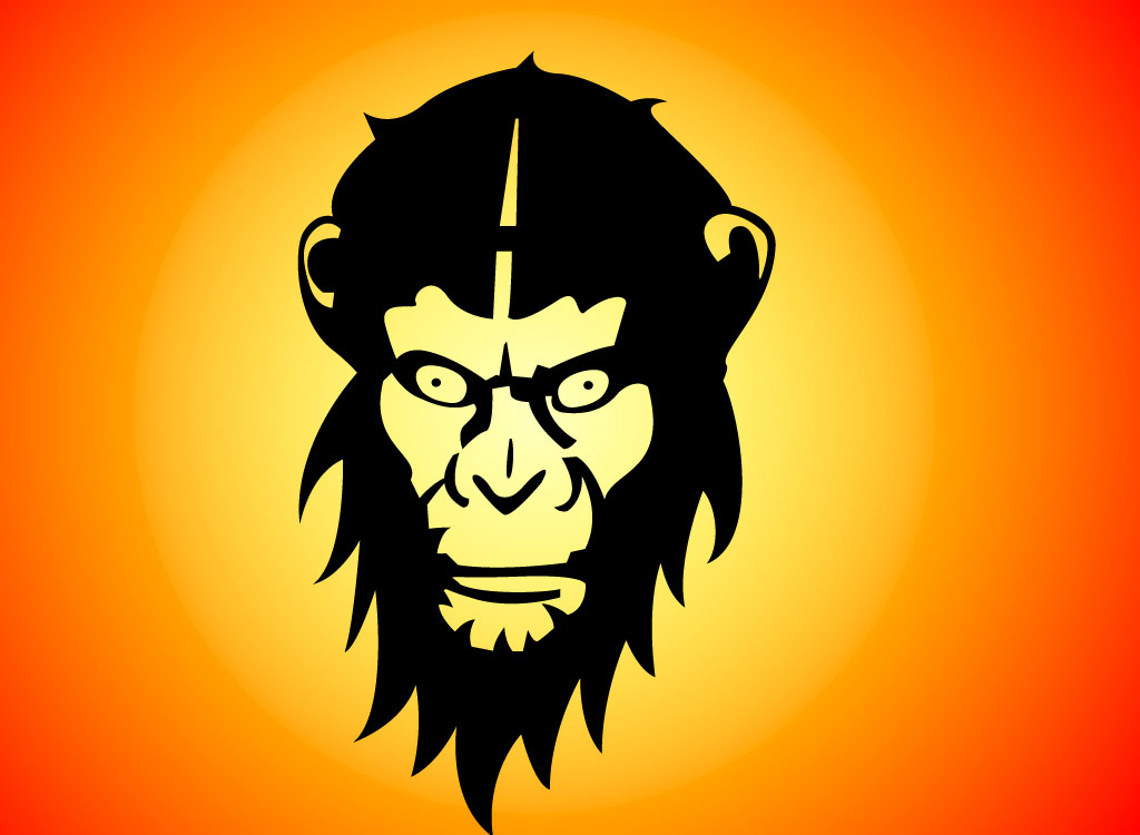 Mad Monkey Illustration