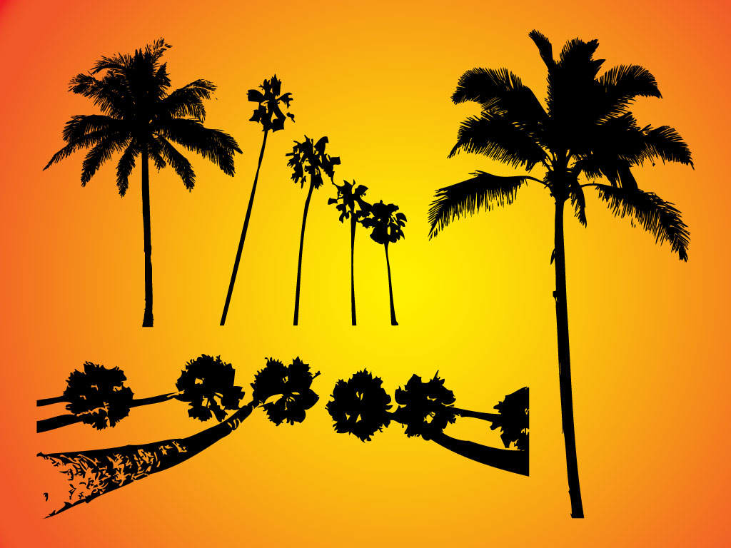 Palm Tree Vectors Free | Beautiful Scenery Photography
