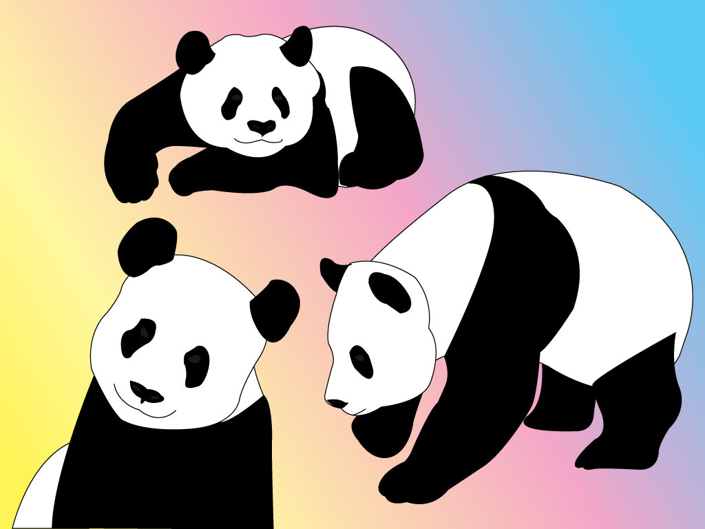 Chinese Panda Vector Panda Vector Pack