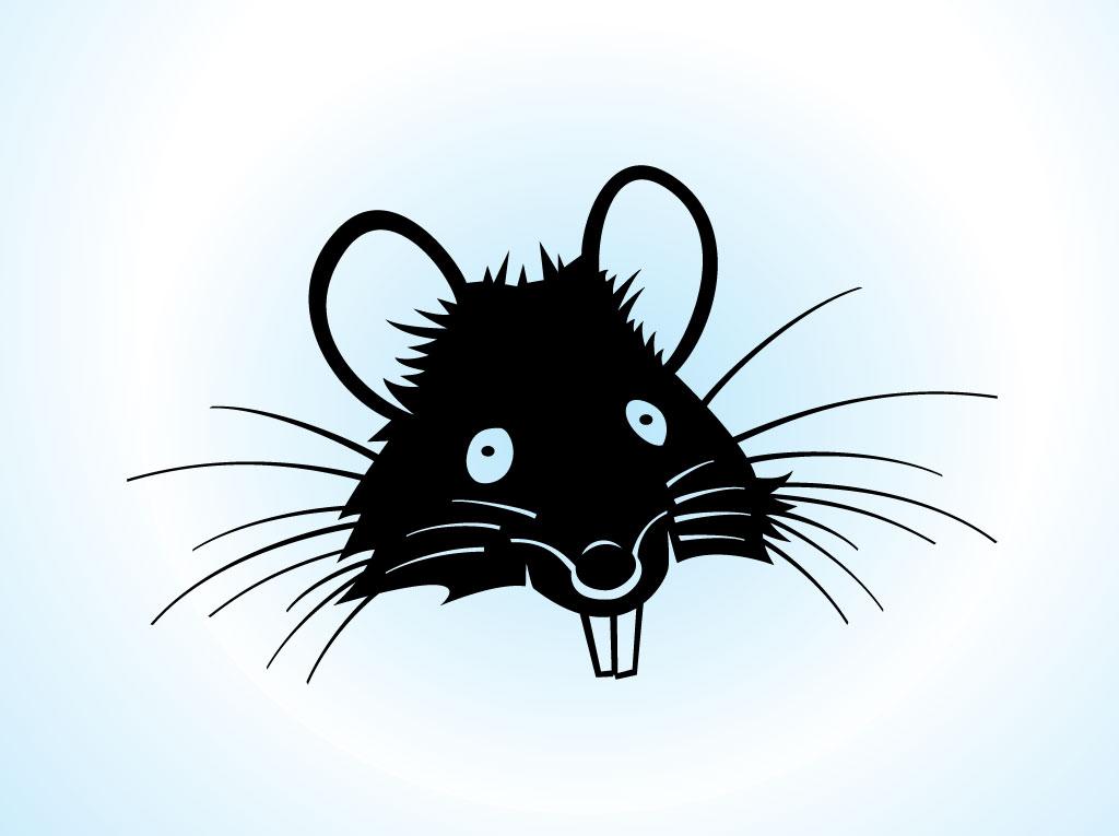 Black Rat Clip Art