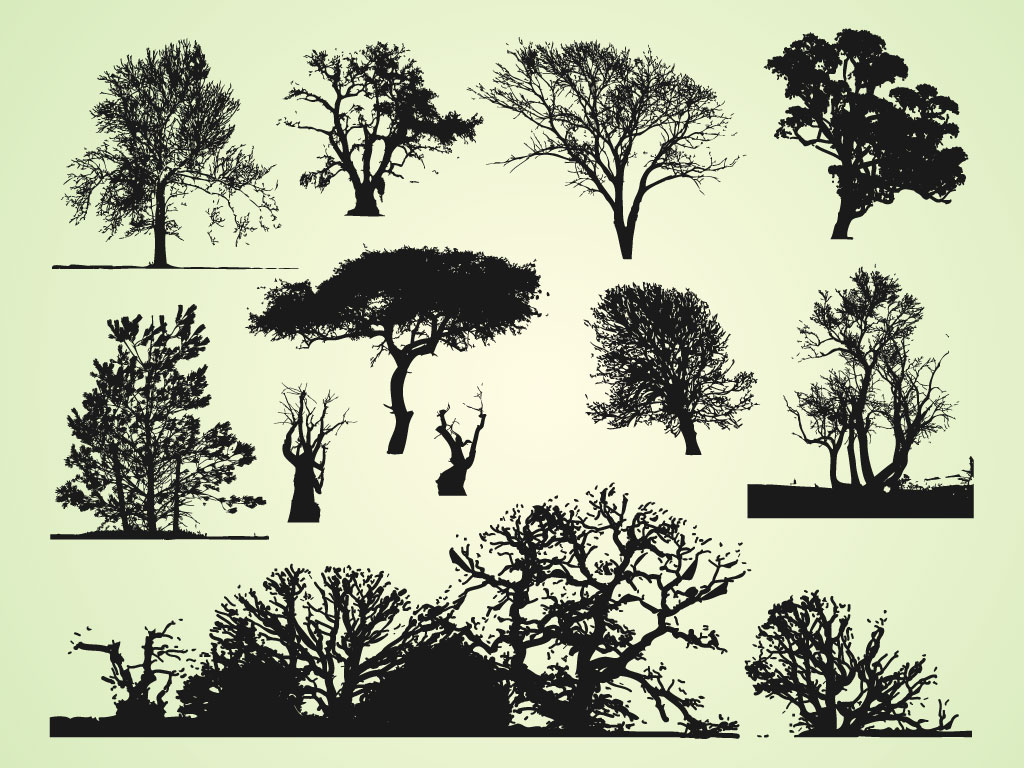 Trees Graphics Bundle
